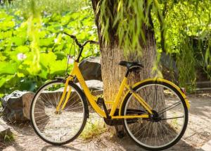 摩拜单车和ofo哪个好骑 摩拜单车与ofo单车区别对比 第1张